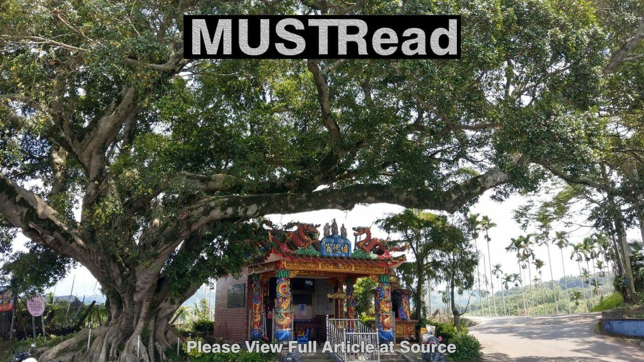 https://report.tw/wp-content/uploads/2019/12/Must_Read48-1280x720.jpg