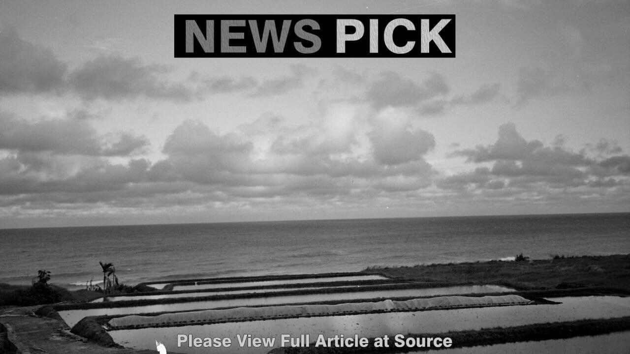 https://report.tw/wp-content/uploads/2019/12/News_Pick44-1280x720.jpg