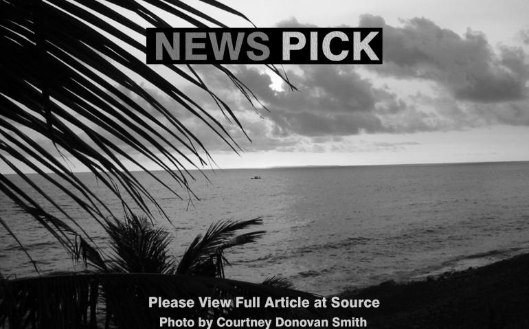 News_Pick17