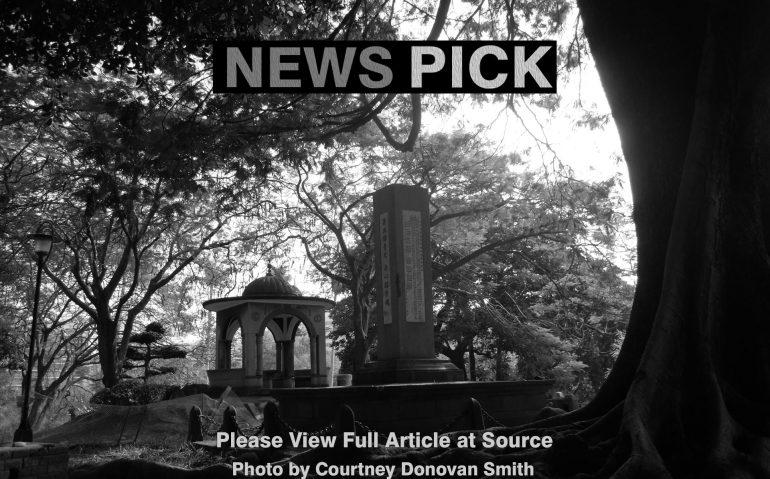 News_Pick34