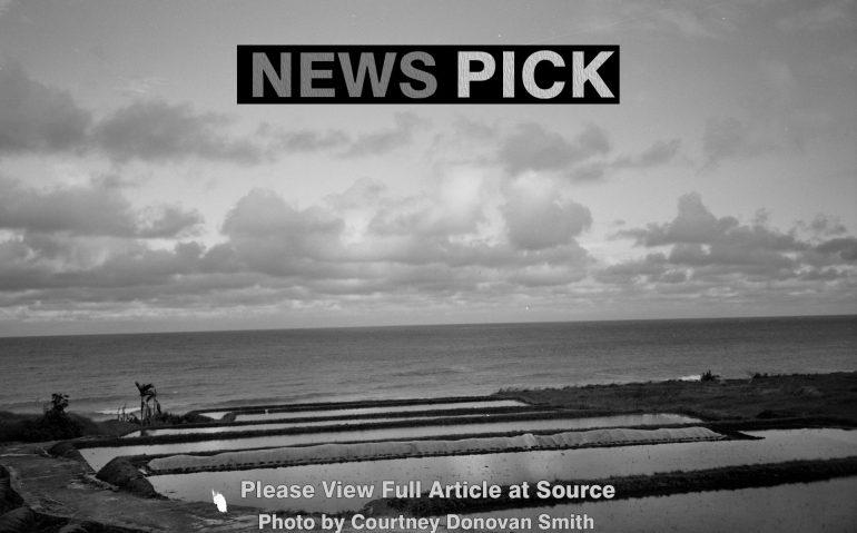 News_Pick44
