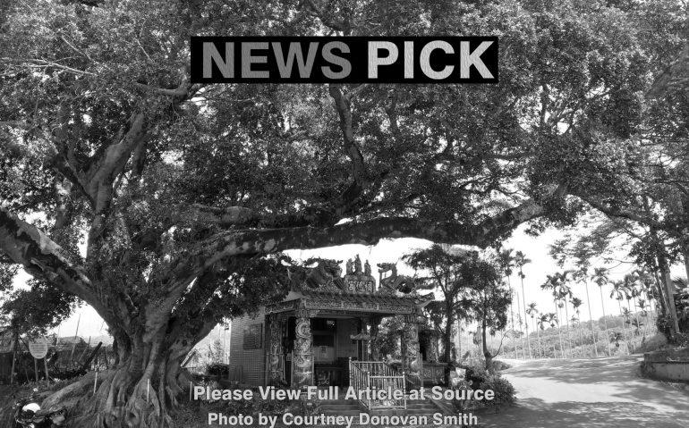 News_Pick48